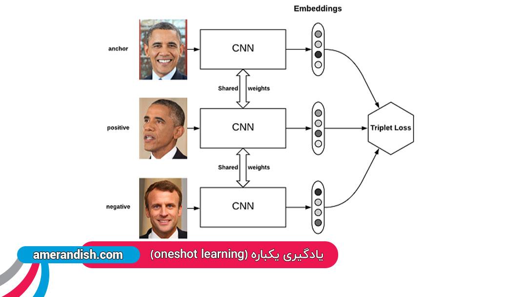 یادگیری یکباره ای (oneshot learning)